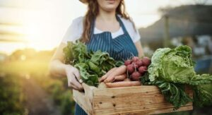 apoyando el medio ambiente consumiendo alimentos ecologicos